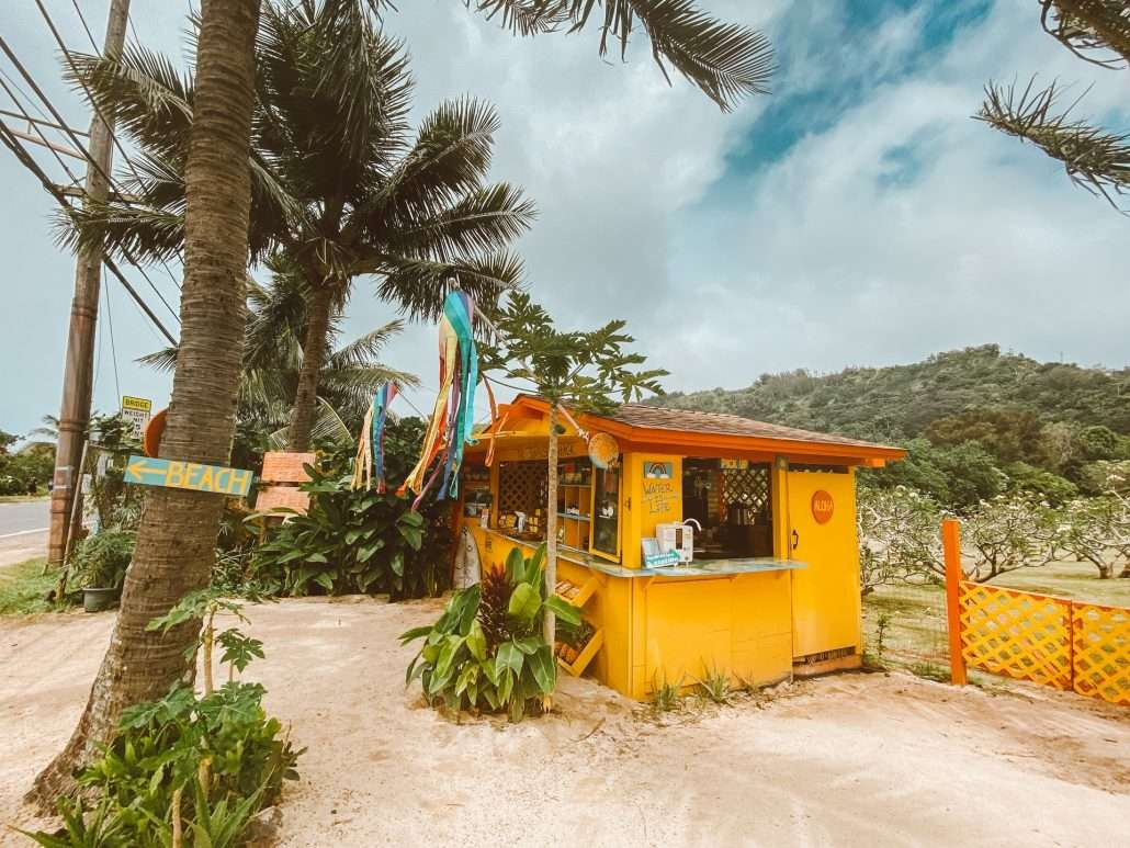 Best Organic And Sustainable Places In Waikiki